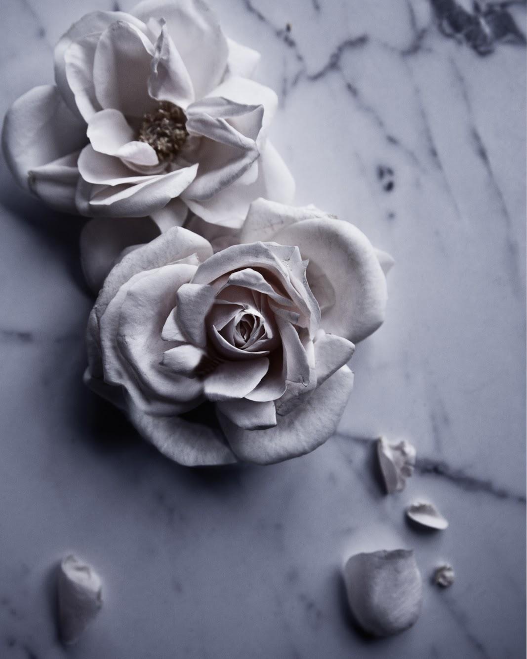 """Ta den perfekta bilden på dina blommor med hjälp av onlinekursen """"Styling och """"Storytelling"""""""